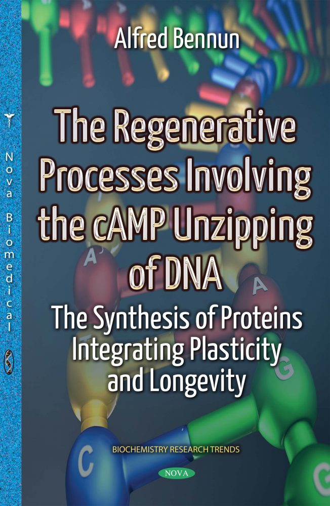 The Regenerative Processes Involving the cAMP Unzipping of DNA: The  Synthesis of Proteins Integrating Plasticity and Longevity